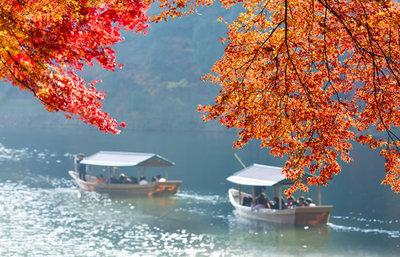 京都市右京区の紅葉の名所!嵐山・嵯峨野周辺で秋の美しさに触れるスポット総まとめ