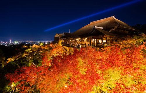 京都市東山区の紅葉の名所!祇園・清水・東山周辺で秋の美しさに触れるスポット総まとめ
