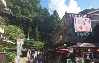 赤目四十八滝、伊賀流忍者修行の地は美しい景勝地!大自然の渓谷を巡るハイキング旅