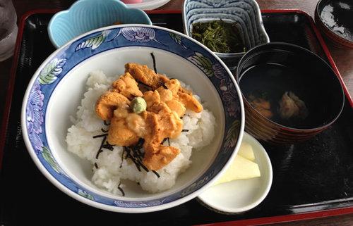 青森・種差海岸地域の名物、ウニ丼【みんなで楽しむご当地グルメ】