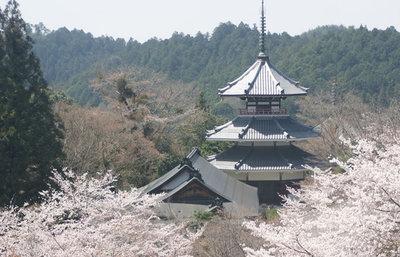 天空の宗教都市吉野山、金峯山寺で日本史を彩る伝説、史跡を楽しむ歴史旅