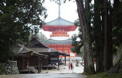 紀伊山上・密教の聖地へ!高野山・金剛峯寺で悠久の謎を目にする歴史旅