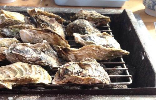 この食べ放題がスゴイ!三重・志摩半島名物、的矢かき【みんなで楽しむご当地グルメ】
