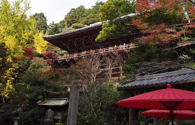 弁慶と義経が出会うきっかけになった書寫山圓教寺。色づく紅葉と弁慶の伝承を巡る旅