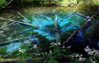 神の子池、究極までに透き通った神秘のブルーが美しい、裏摩周の自然を巡る旅