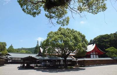 太古の記憶を伝える宗像大社、海の正倉院とも言われる聖地を知り、そのパワーに触れる旅