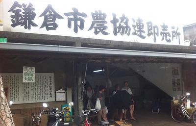 【保存版】日帰り鎌倉旅で一度は訪れておきたい、鎌倉駅最寄りのスポット16選