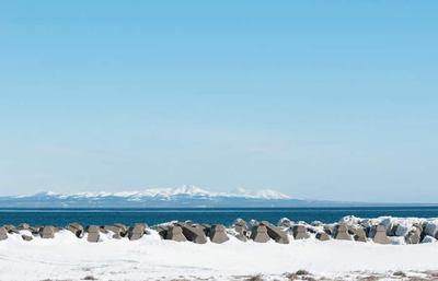 北海道・冬の野付半島、厳しくも美しい氷の海でオオワシ、オジロワシに出逢う旅