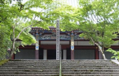 京都・永観堂で人気を集める青もみじ、紅葉の名所で違う美しさに触れる旅