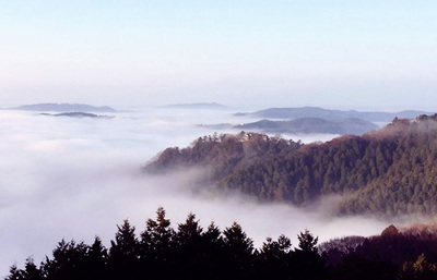 雲海に浮かぶ備中松山城、日本最高所の現存天守でもう1つの天空の城の景色を知る旅へ