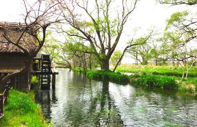 信州安曇野、北アルプスの大自然と湧水が作り出す美しい里で大人の癒やしを感じる旅