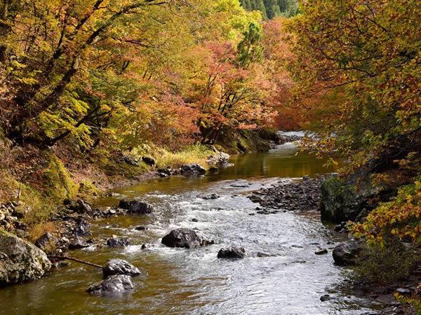 湯瀬渓谷の風景