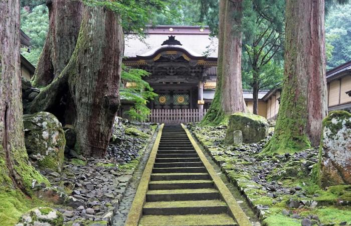 古杉の林に佇む永平寺の勅使門(唐門)