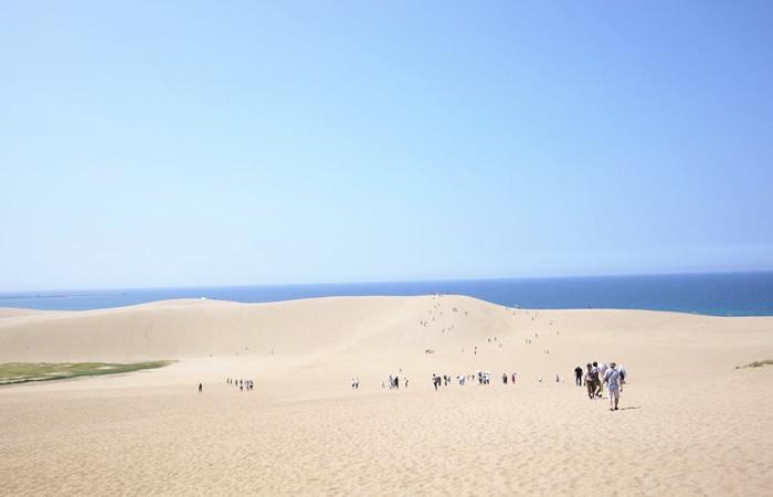 日本にいるとは思えないほど広大な鳥取砂丘の景観