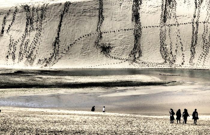 自然の原風景を思わせる鳥取砂丘